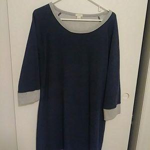 J Crew Large Dress